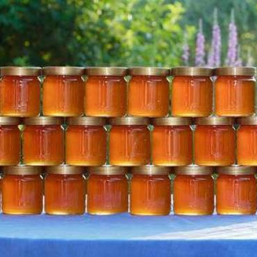 les bienfaits des différents produits de la ruche