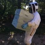 apiculteur bio Dordogne Périgord