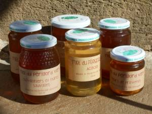 La diversité des miels du Périgord vert