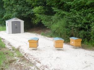 un rucher d'entreprise